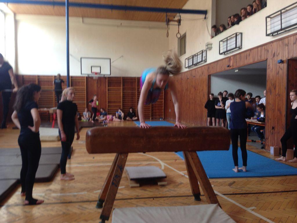 2017_gymnastika08.jpg