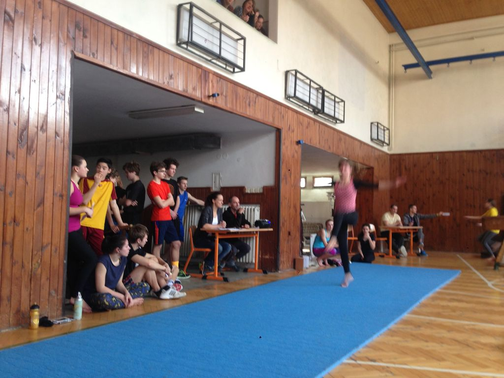 2017_gymnastika13.jpg