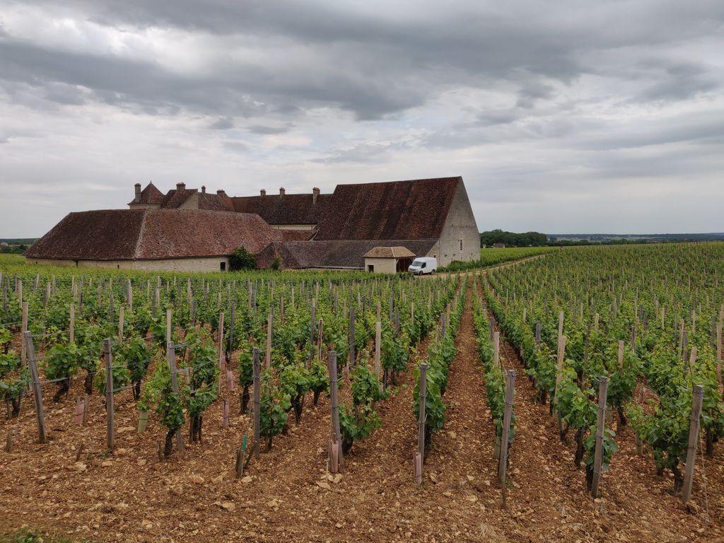 2019_Dijon26.jpg