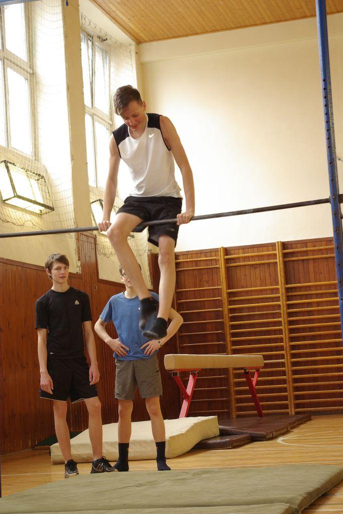 2013_gymnastika002