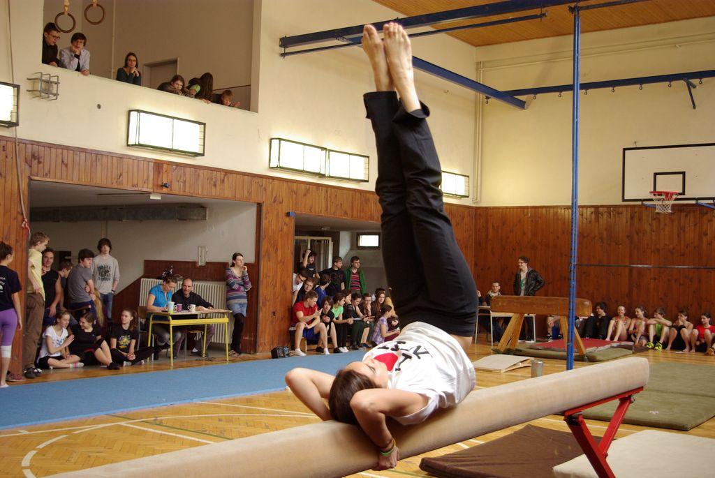 2013_gymnastika028