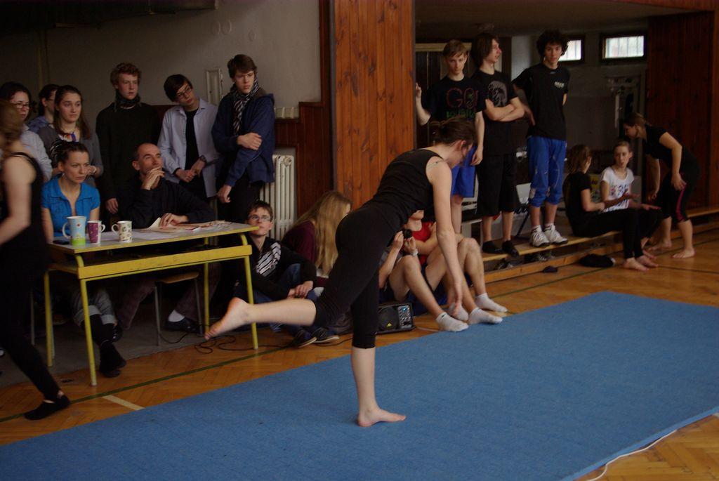 2013_gymnastika047