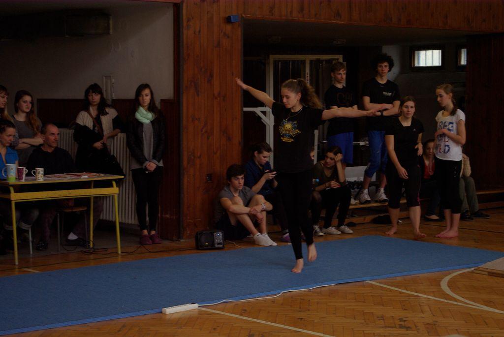 2013_gymnastika056