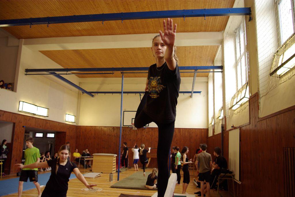 2013_gymnastika058