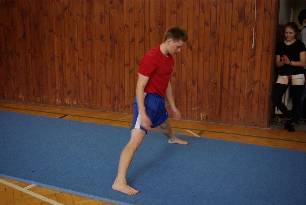 2013_gymnastika073