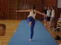 2013_gymnastika017