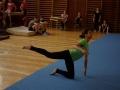2013_gymnastika049