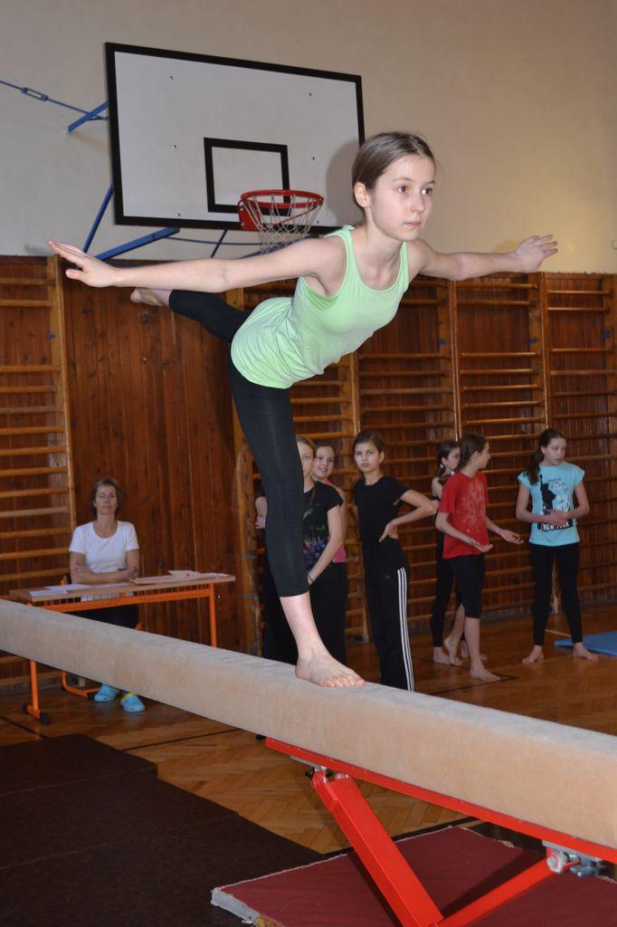 2014_gymnastika007