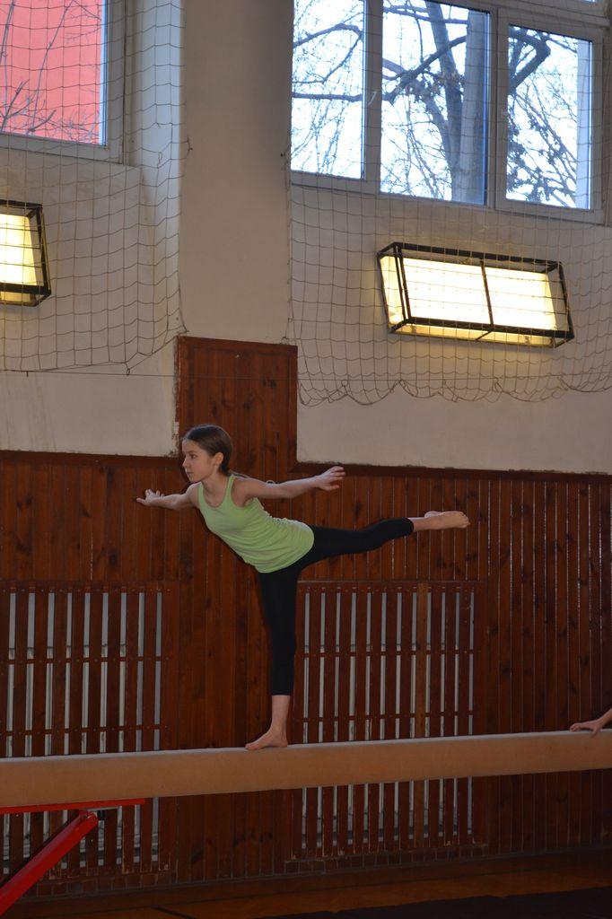2014_gymnastika013