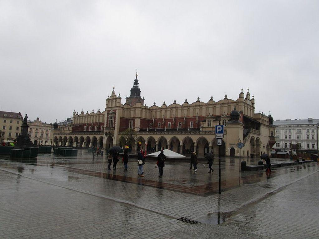 2017_krakovl009.jpg