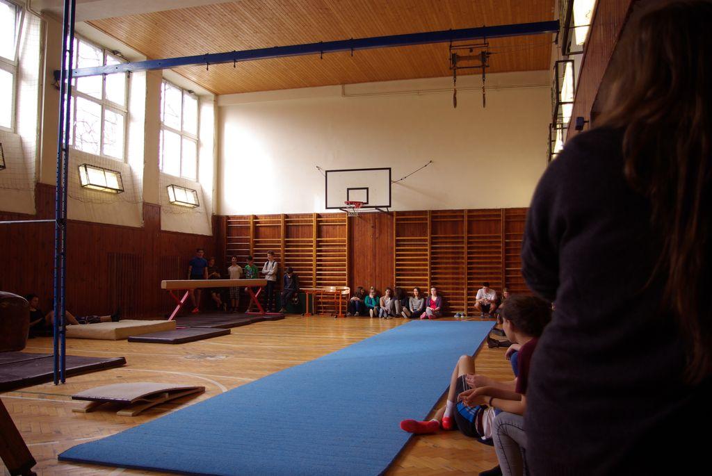 2015_zp_gymnastika23