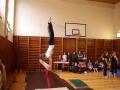 2015_zp_gymnastika16