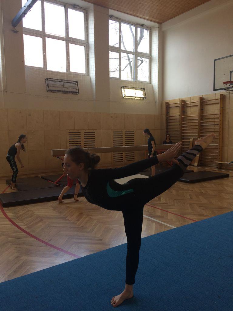 2018_gymnastika20.JPG