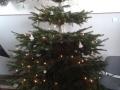 Vánoční stromek před ředitelnou
